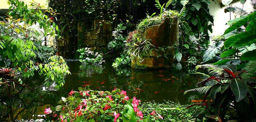 5 amazing gardens and parks to discover in Nice